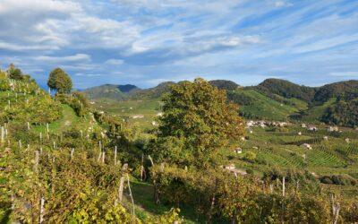 Esplora le meraviglie delle Colline Unesco